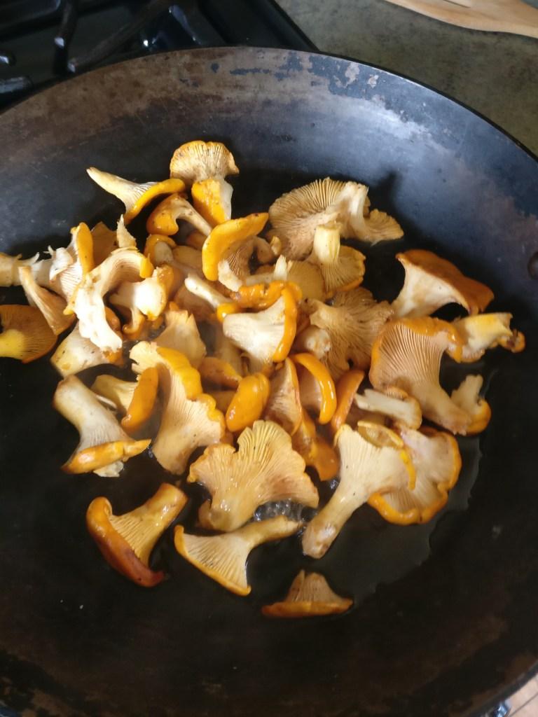 Cooking chanterelles, mushrooms, wild