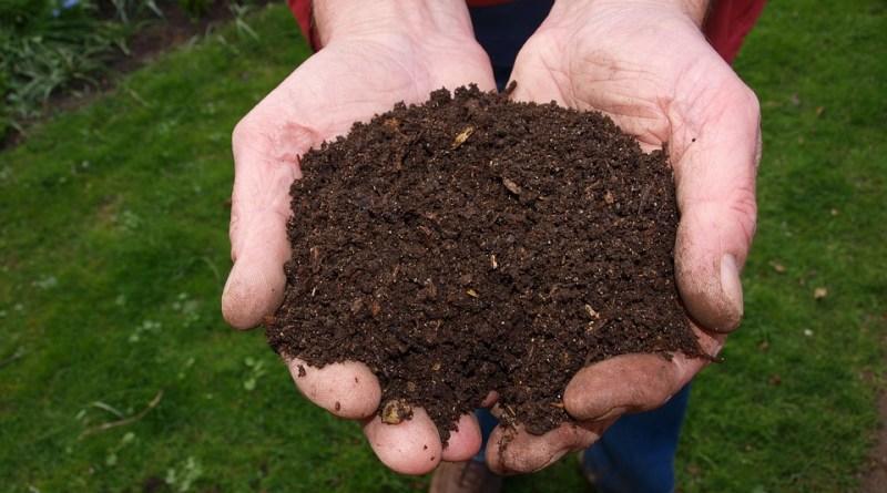 Organic Composting