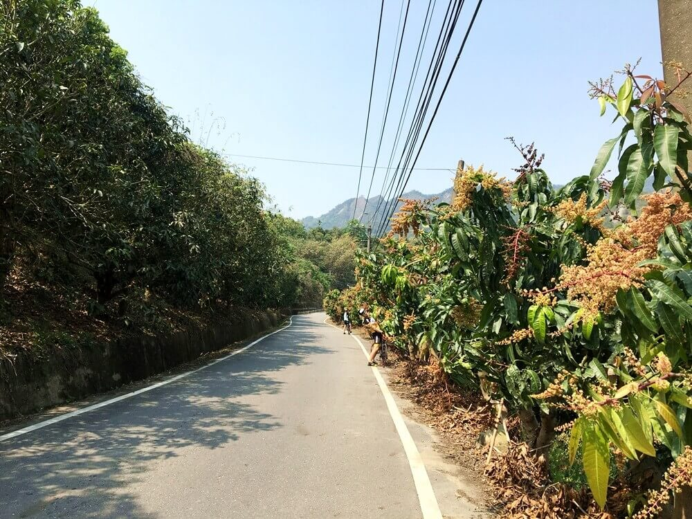 nanhua-cycling-route