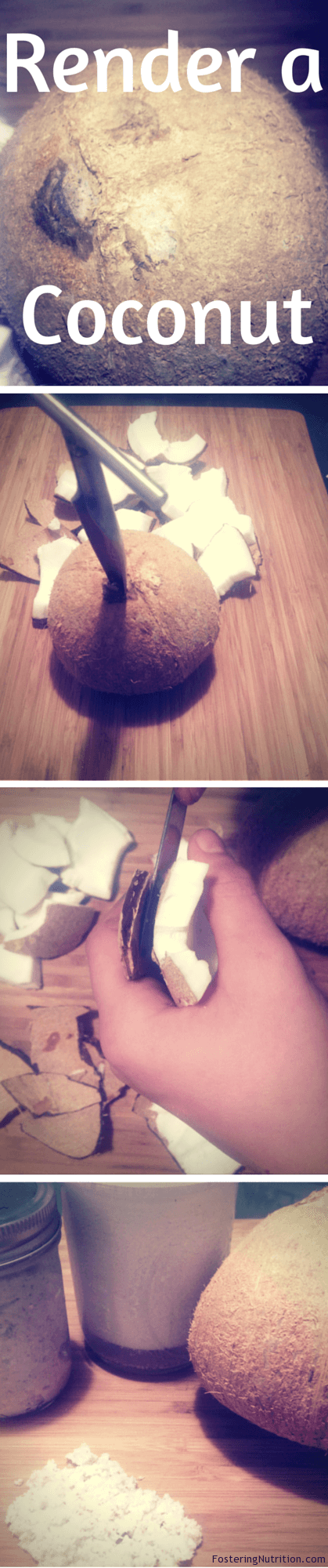 Render a Coconut