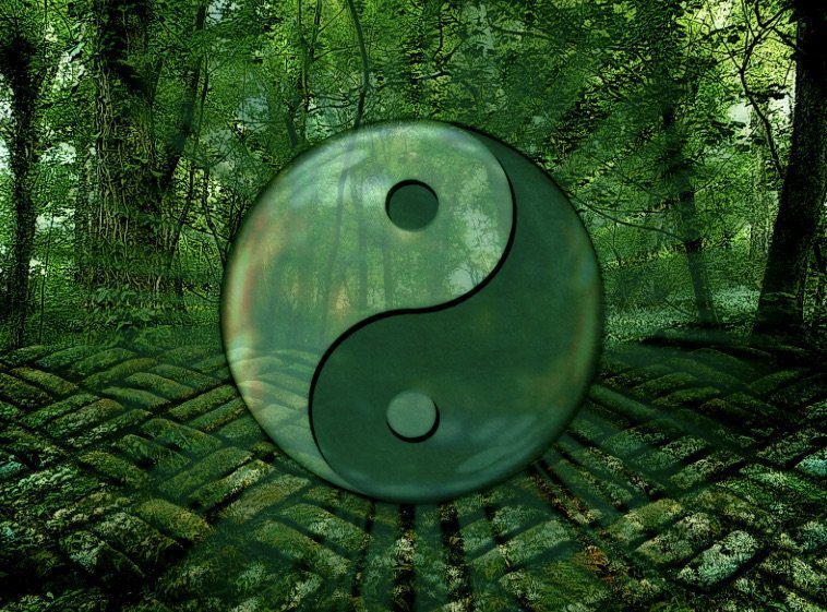 Embracing the Way of Nature: Polarity and the Tao