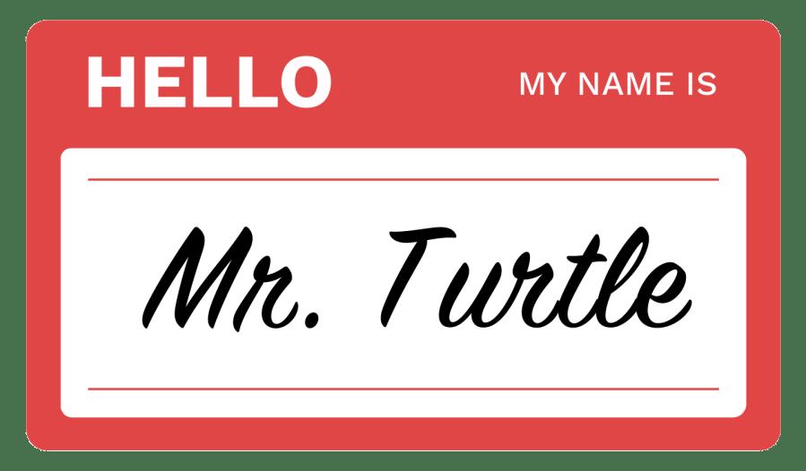 Mr.Turrtle