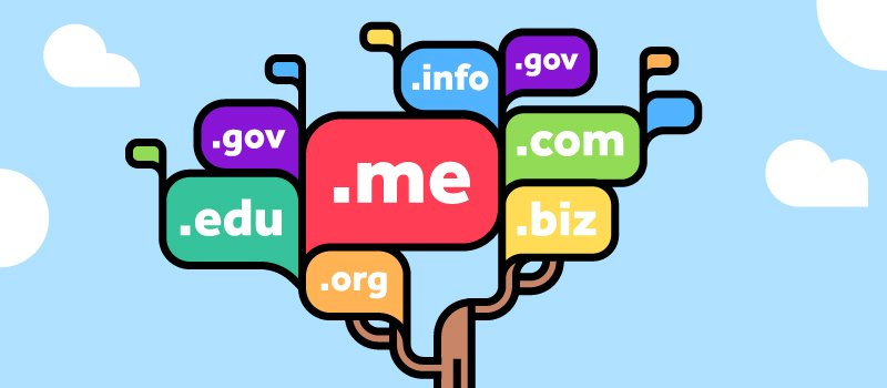 what is the cost of a domain name