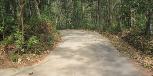LAND AND HOUSE FOR SALE AT ADOOR,PATHANAMTHITTA
