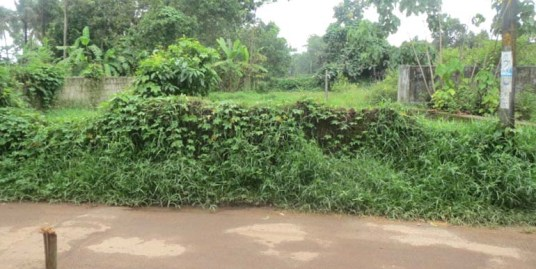 Land for sale near Nedumbassery Airport