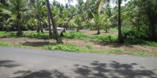 7 Acres of land for resort /Hotel at Thrissur
