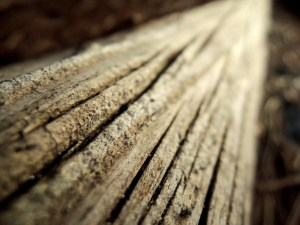 wood-detail-1315360-gallery
