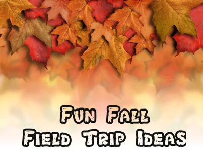 Fun Fall Field Trip Ideas
