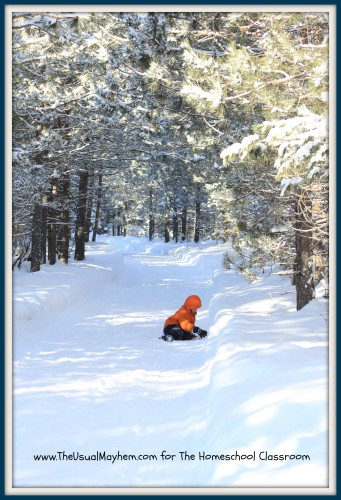 child on winter path