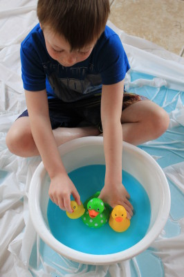 ducks invitation to play