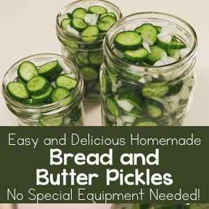 Easy and Delicious Bread and Butter Pickles Recipe (no special equipment needed!)   Real Life at Home