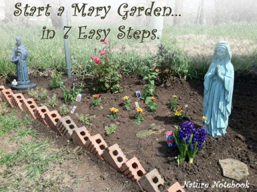Tips to help you create your own Mary Garden at home or at your parish.