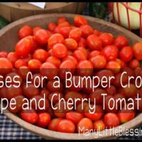 10 Uses for Grape and Cherry Tomatoes