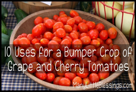 10 uses for a bumper crop of grape and cherry tomatoes