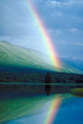 Rainbow Unit Study