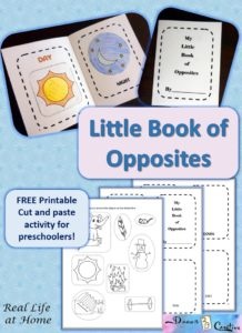 Little Book of Opposites picture