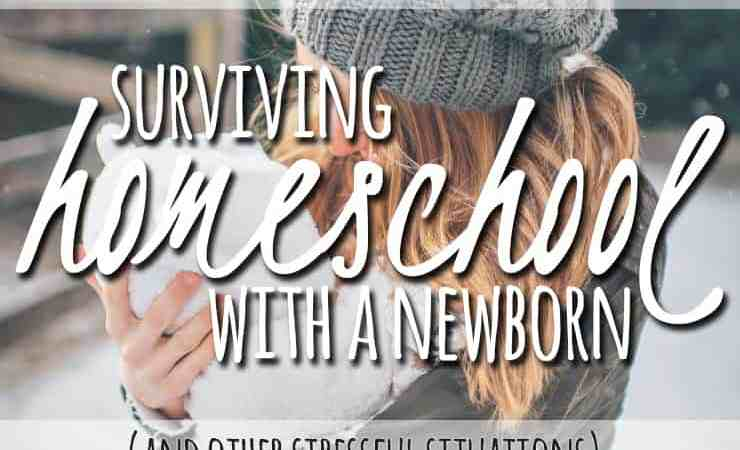 3 Point Pep Talk for Surviving Homeschool During Stressful Times