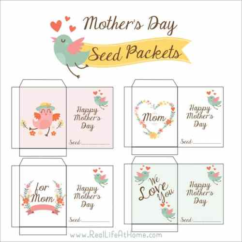 Need a cute item to go along with a garden or outdoor-themed Mother's Day gift? Seeds packaged in these free printable Mother's Day Seed Packets will be a great addition to your gift or craft!
