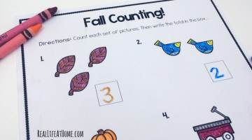 Grab this cute set fun math fall worksheets for first grade and kindergarten! This set covers counting, comparing and adding numbers within 10. Plus, all pages are black and white for easy printing!