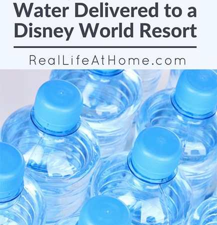 How to Quickly Get Bottled Water Delivered to a Disney World Resort