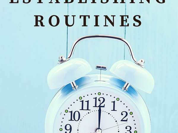 Finding Order at Home by Establishing Routines