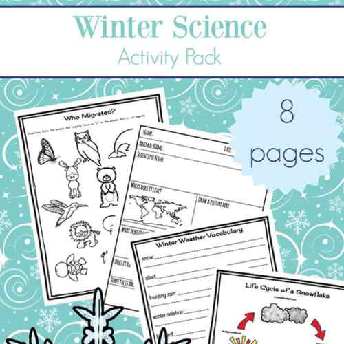 Free printable eight page winter worksheets and printables packet which includes many items needed for some winter science activities: printables about animal hibernation and migration, animal mini report recording sheet, winter nature report, winter vocabulary definitions page, snowflake lifecycle page, and more | Real Life at Home #WinterScience #WinterWorksheets #ElementaryScience