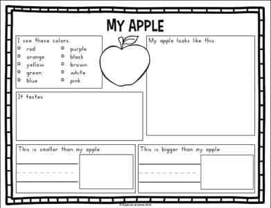 My Apple Information Page from the Fall Science Worksheets Packet on Real Life at Home
