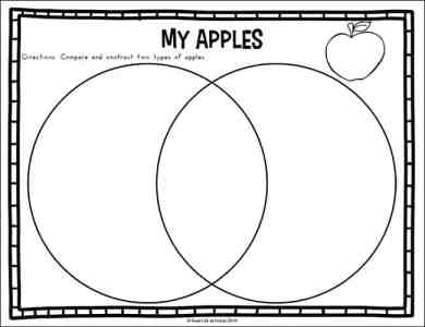 My Apple Venn Diagram Page from the Fall Science Worksheets Packet on Real Life at Home