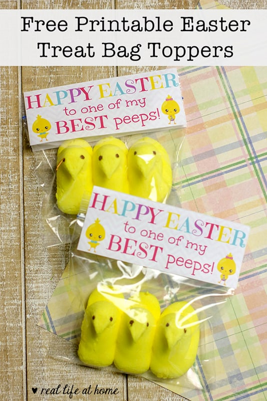 picture relating to Free Printable Treat Bag Toppers known as Adorable No cost Printable Toppers for Easter Take care of Luggage