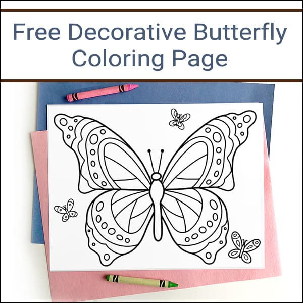 photo relating to Printable Butterflies titled Absolutely free Printable Butterfly Coloring Web page for Young children and Grownups