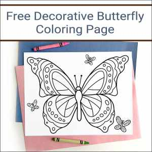 Looking for a fun coloring page for Spring and Summer? Here is a free printable Butterfly Coloring Page that is great for kids of all ages (and adults too)