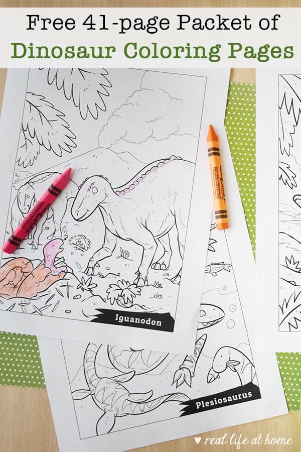 graphic relating to Free Printable Dinosaur Coloring Pages titled Absolutely free Printable Dinosaur Coloring Web pages Packet for Small children (41