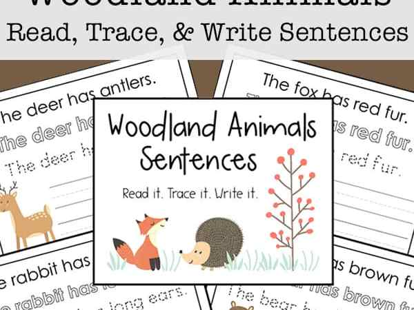 Woodland Animals Copywork Sentences Free Printables for Kids