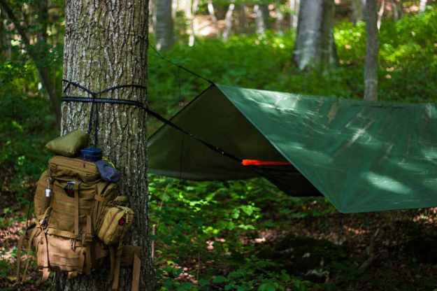 Hammocking in the forest