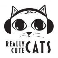 Really Cute Cats