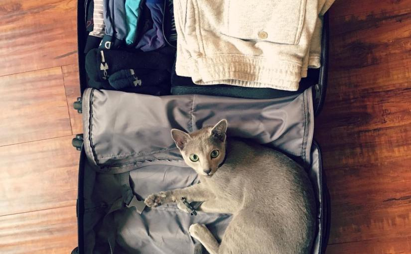 I iz packed and ready to go