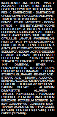 NARS Natural Radiant Longwear Foundation Ingredients
