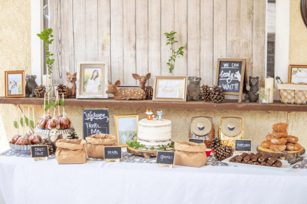 rustic woodland baby shower theme
