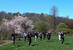 Tai chi for hypertension
