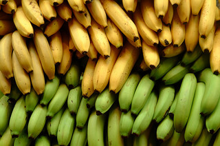 bananas and organic cultivation