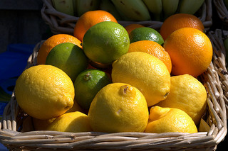 citrus peel extracts stop cancer growth