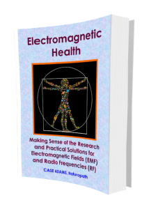 Electromagnetic and RF safety