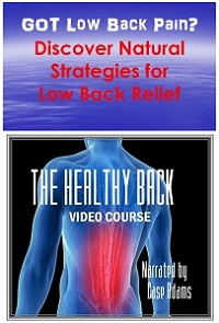 The Healthy Back - low back pain