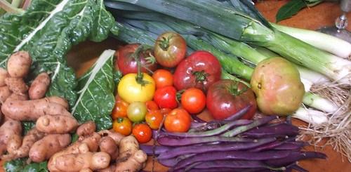 Western diet increases telomere length