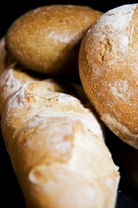 enzymes from probiotics breaks down gluten