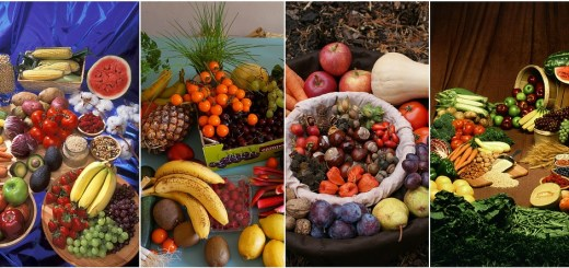 organic foods reduce cancer risk