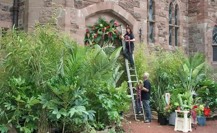 hiring plants trees  props to help clients create
