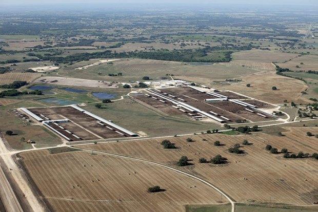 Aurora Dairy in Dublin, Texas. Photo by Cornucopia Institute