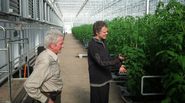 Organic farmers Eliot Coleman and Dave Chapman checking out a hydroponic growing operation.