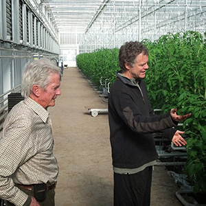 Real Organic Project Board Members Eliot Coleman and Dave Chapman Inspect Tomatoes